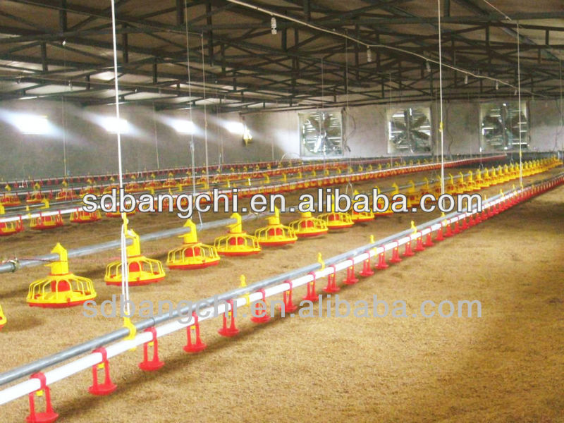 Bangchi Poultry Raising Equipment For Broiler House