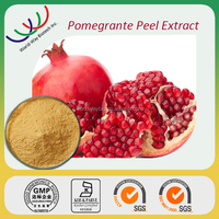 Anti-age KOSHER FDA HACCP cGMP manufacturer supply free sample 40% ellagic acid extract natural pomegranate bark extract powder