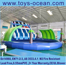 dolphin Inflatable water pool slide ,swimming pool slide