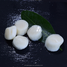 Good Quality Japan Sea Scallop