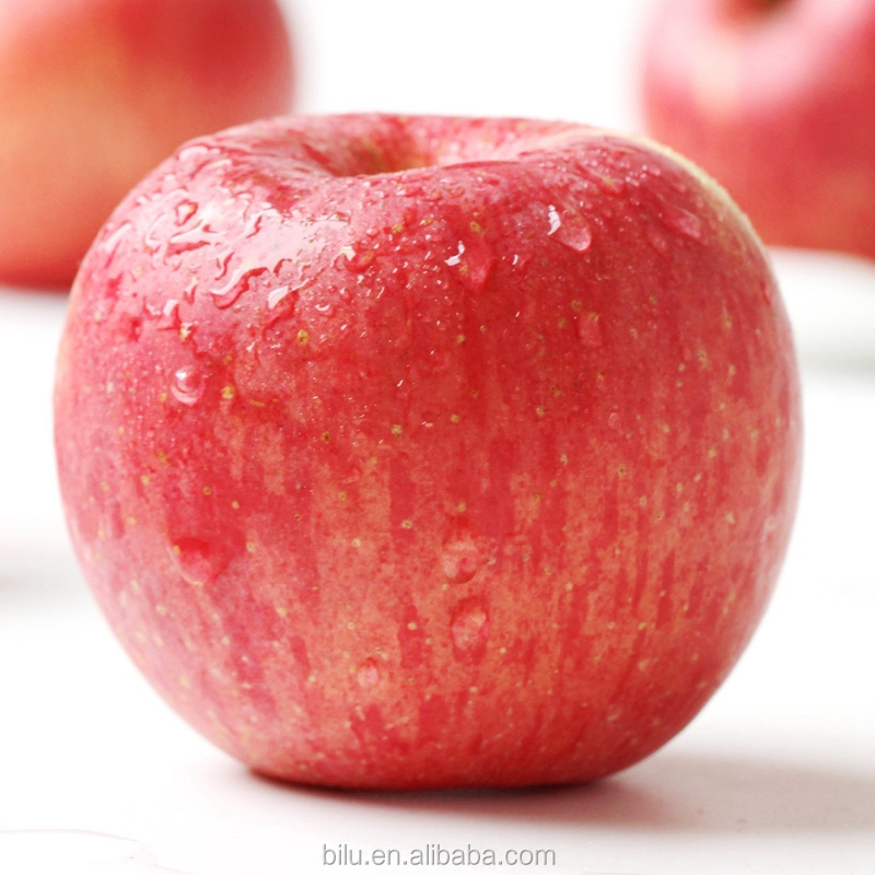 Fresh Qinguan Apples Wholesale Fruit Prices Export India