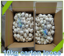 reliable garlic supplier / fresh chinese garlic/normal & pure white