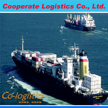 Goods export from china to Jebel Ali by sea freight shipping--Shining Skype:colsales06