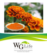 Health Benefits Marigold Extract Lutein Esters Powder 5%, 10% UV