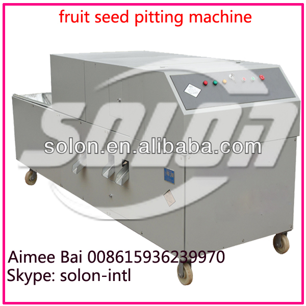 Factory price fruit deseeding machine with high quality from Aimee 8615936239970