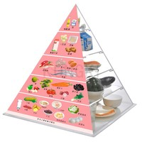 Latest Product Health Diet Plastic Pyramid with simulated food model