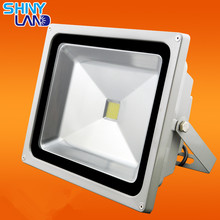 Italy distributors wanted 10w led flood