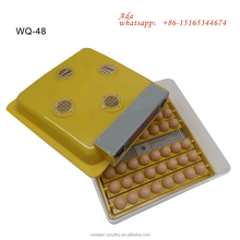 Egg incubator On Sale/Fully Automatic egg hatcher WeiQian Brand Family Use Mini 48 eggs WQ-48