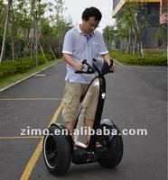 Freeyoyo two wheeled self-balancing electric mobility scooter