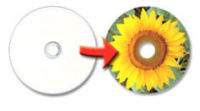 Inkjet/ Thermal Printable DVD+R DVD-R 1-16X