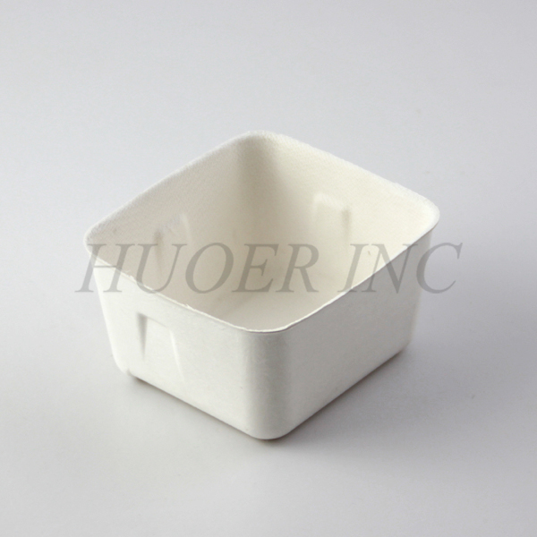 Molded Pulp Sustainable Eco Friendly Products Packaging