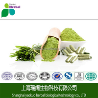High quality ISO Certified Organic Wheat Grass Juice Powder