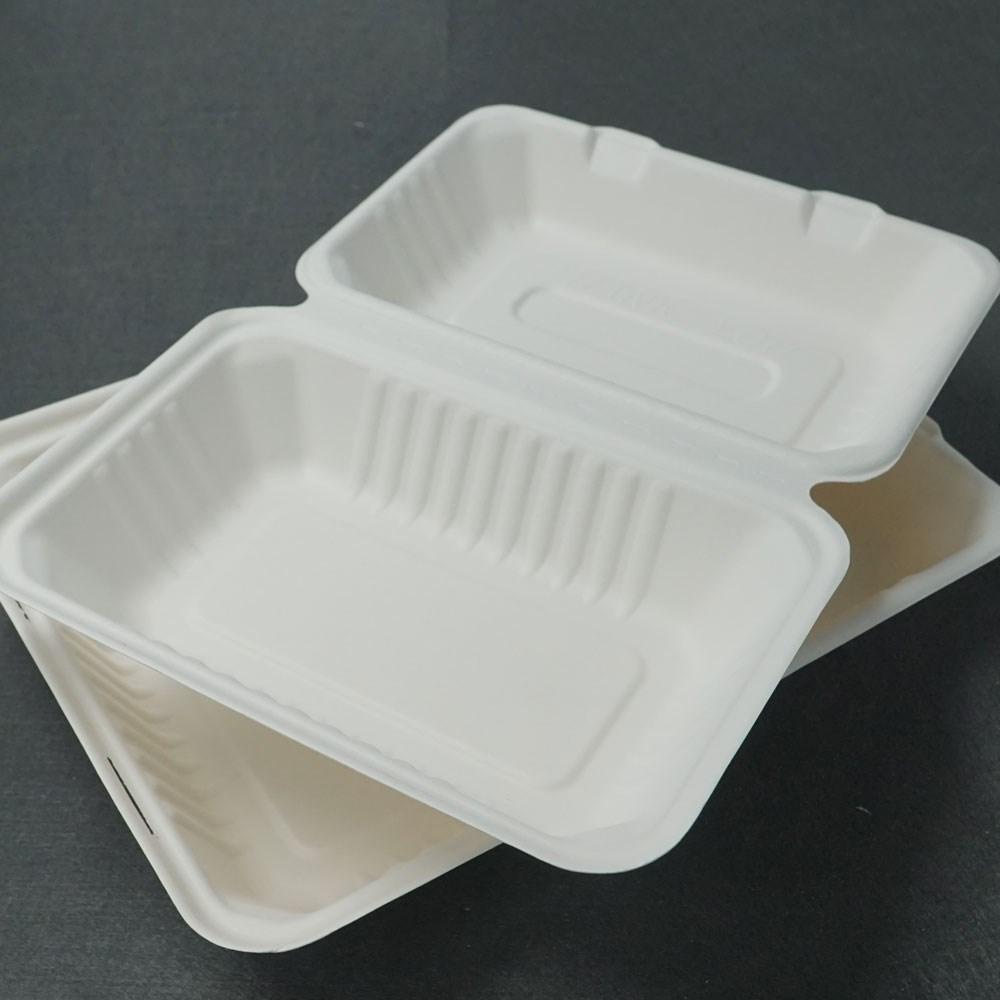 9\ x6\  Disposable Biodegradable Used Restaurant Dinnerware & 9\