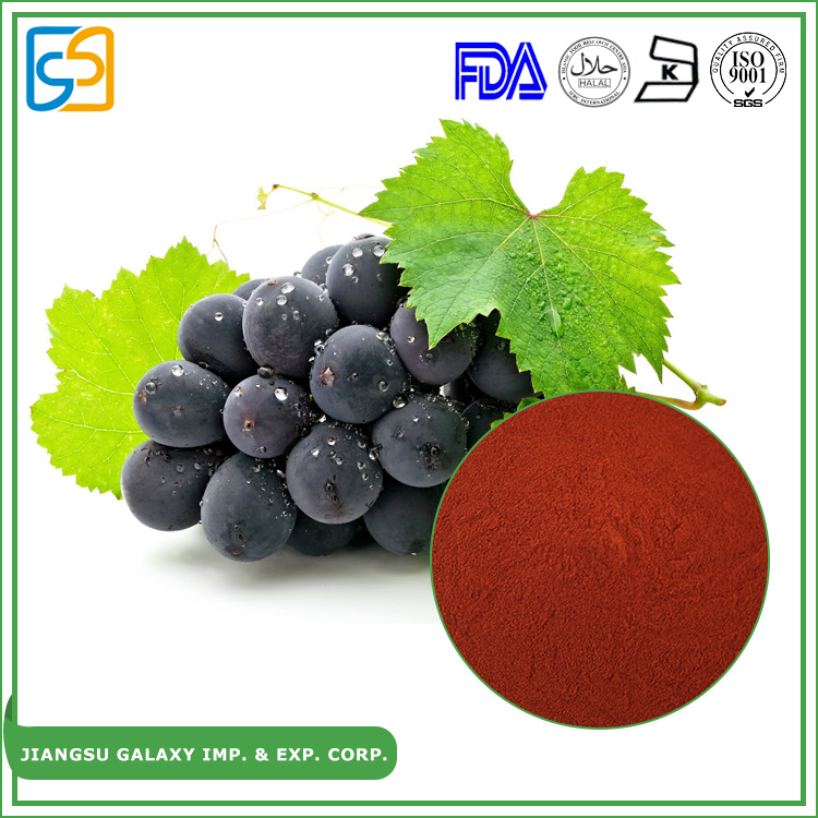 Natural p.e. proanthocyanidins antioxidant raw material grape seed extract opc 95%