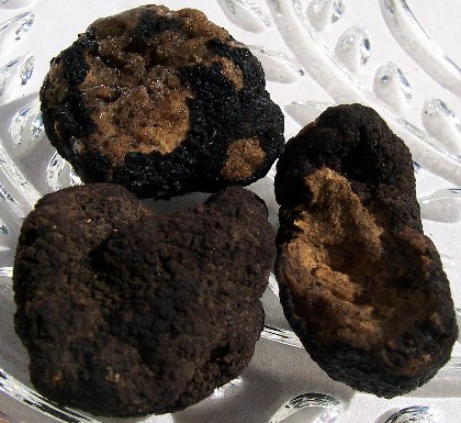 Black / White Whole Truffle Mushroom Dried /Frozen / Fresh (Whole, slices and pieces)