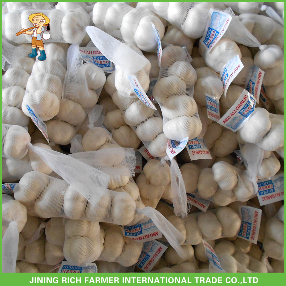 High Quality Small Packing In 10kg Mesh Bag Good Price Pure White Snow White Garlic 4.5CM-6.0CM