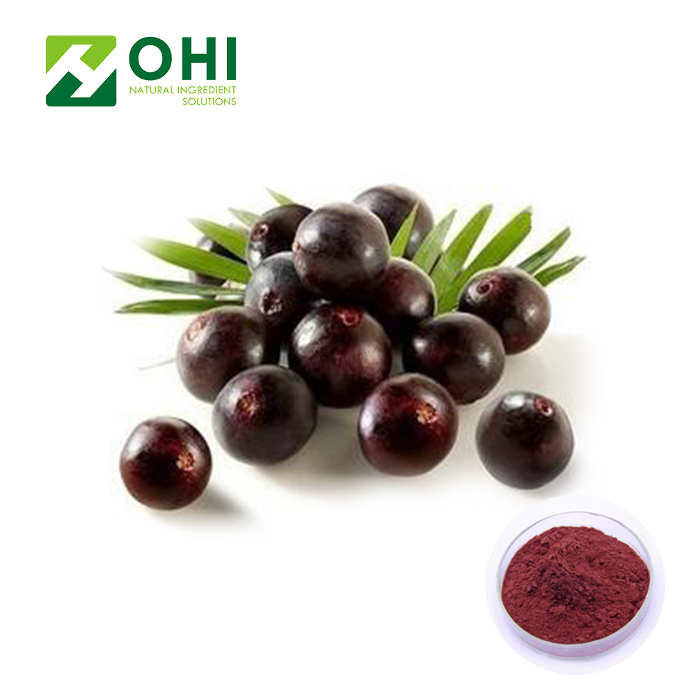 Natural Acai Berry Powder 5% Vitamin C Acai Berry Extract