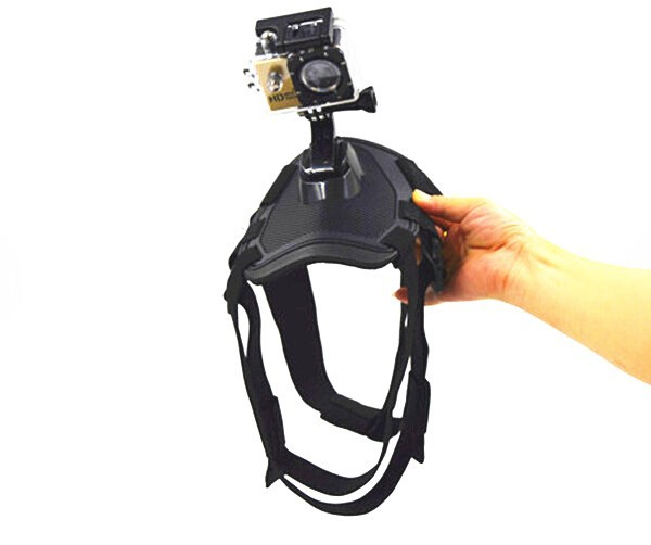 2015 New arrival Dog harness strap for GoPros 4/3+/3, Dog Fetch Harness Chest Strap