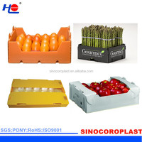 Customized Water Proof Fruit Plastic Box