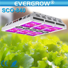 Decorative Plant Indoor high par value led grow lights , plant grow light