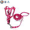 QQ04 Personalized Design Pet Dog Collar and Dog Leash