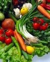 Export - Fresh India Vegetables