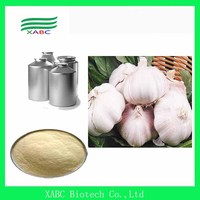 Free Sample Garlic Allicin, 100% Pure Garlic Extract, Pure Natural Garlic Extract Allicin Powder