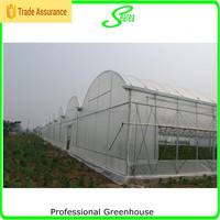 Multi Span Agricultural Greenhouses Type And