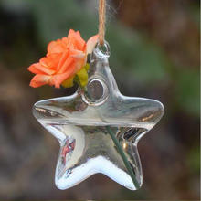 wholesale five-pointed star shaped hanging glass vases