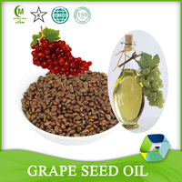 Cold Pressed Cosmetic Grape Seed Extract Oil Price