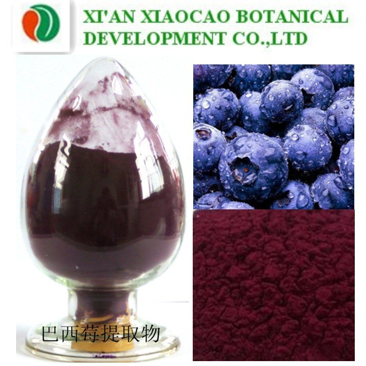 Hot Selling 100% Pure Purple Acai Berry Powder Extract