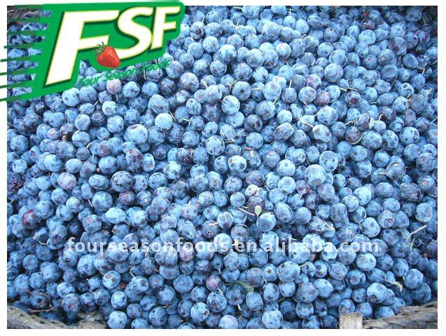 IQF frozen cultivated blueberry