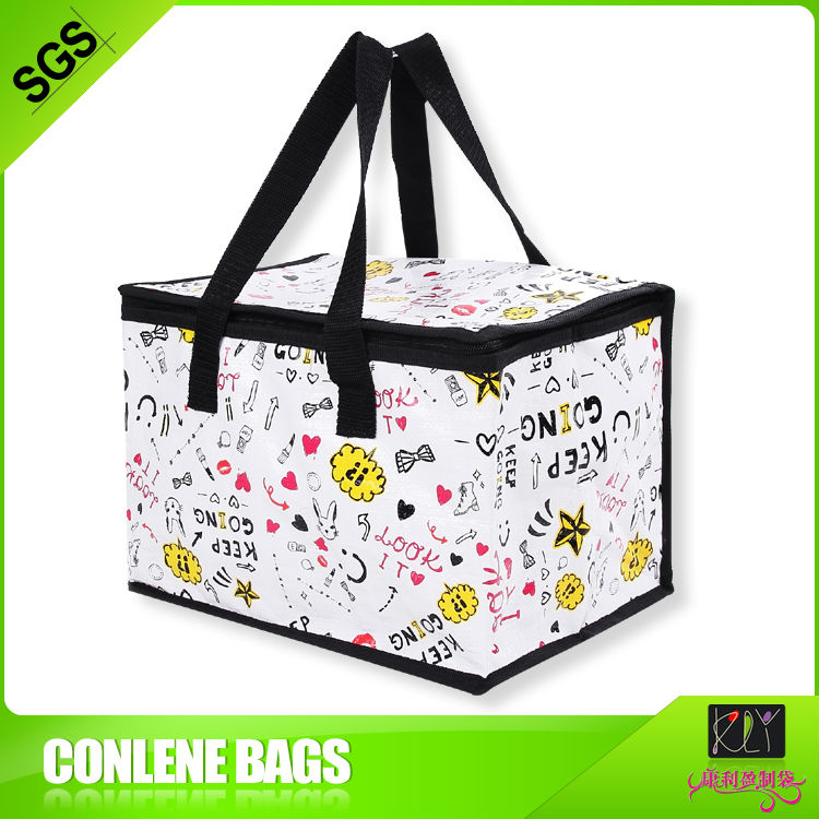 soft side disposable picnic cooler bag