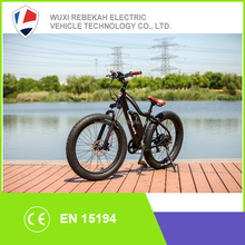 48V 500W Electric Fat Mountain Bike