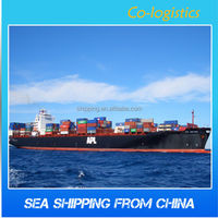 cheap and professional sea shipping /ocean freight from china to VALPARAISO---Sophie