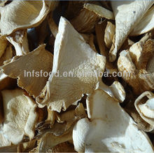 Dried wild and cultivated Oyster mushrooms