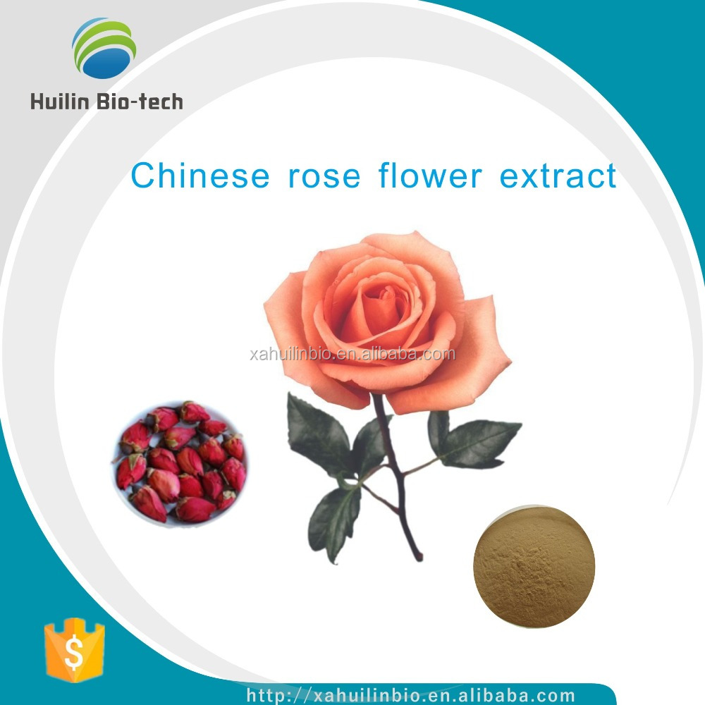 100% Natural Health Products Rose Flower Extract Polyphenol 10:1