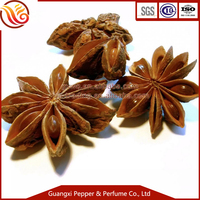 Spices & Herbs Chinese star anise
