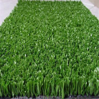 Designer professional sport equipment with grass turf lawn