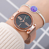 hot sell ST 222 Star Sky Dial Women Bracelet Watches Magnetic alloy Steel Mesh watches Ladies Quartz Dress Watches