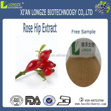 High quality rose hips extract powder 10: 1 , rose Hip p.e
