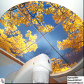 Newest good quality China Manufacturer Cheaper Reinforced Pvc Stretch Ceiling Film