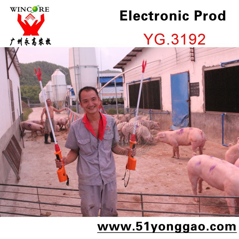 Flexible Electronic Livestock prod for pig