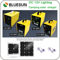 Bluesun hot sell 100w portable solar generator system