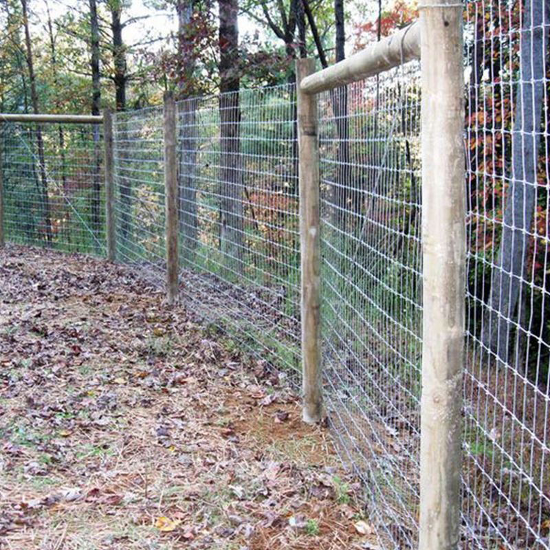 galvanized goat cattle wire mesh fencing