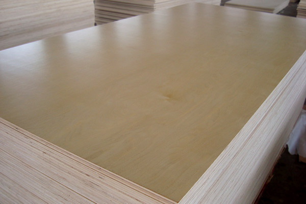 Premium furniture grade poplar core birch Faced Plywood