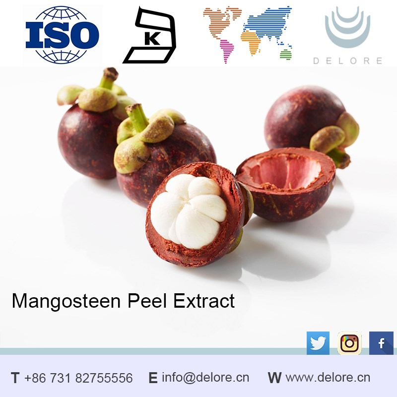 Thailand antioxidant mangosteen extract powder for cosmetic
