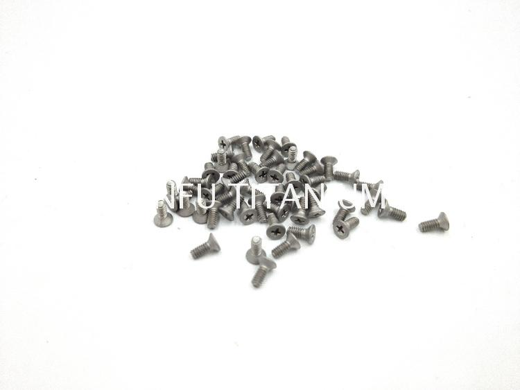 Ti6al4v titanium disc the cross screw phillips cross recessed screws