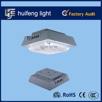 Aluminum Bridgelux chip 40w 80w petrol led gas station light