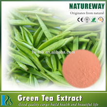 75% polyphenols / 50% catechins / 30% EGCG Green tea extract